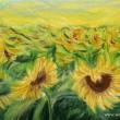 Pole so slnečným kvetom