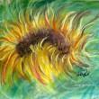 Slnečný kvet